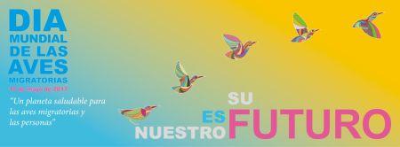 Cartel Día de las Aves MIgratorias