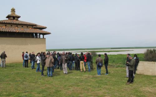 Visita de campo: Lagunas de Villafáfila (Zamora)